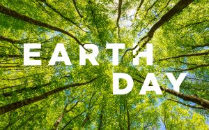 Celebrate Earth Day by Making Access to Green Nature Less White