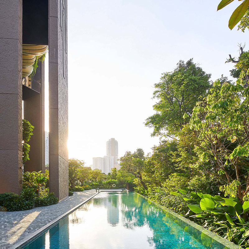 """Biophilia is not a """"trend"""" but the long-term future of architecture and design"""
